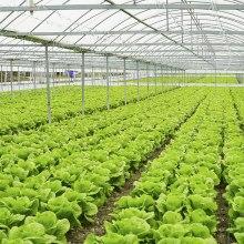 Soil heating in greenhouses.
